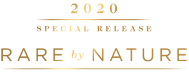 2020 Special Release